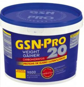 GSN Pro 20 sabor vainilla 2,5Kg