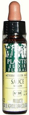Plantis Willow 10ml