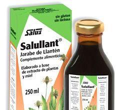 salus_salullant.jpg
